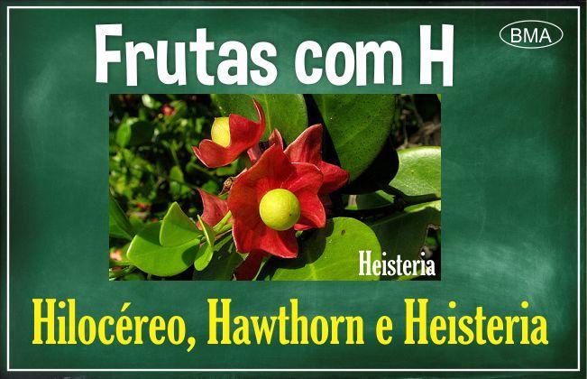 fruta com H