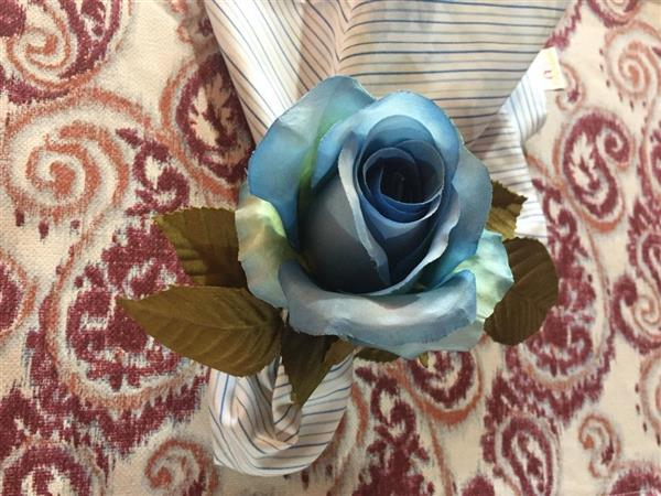 marsala com azul claro